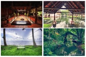 Coconut Lagoon grid
